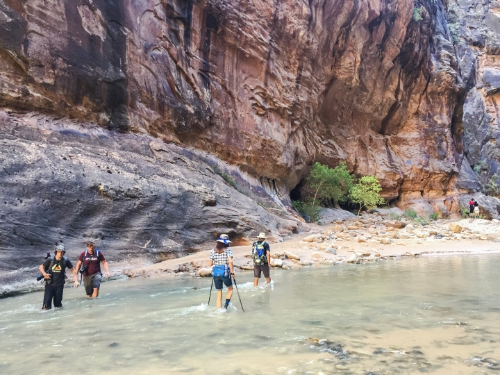 3 Must-do Hikes in Zion National Park
